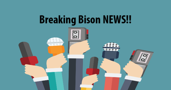 Image - Breaking Bison News