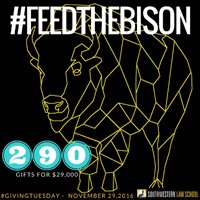 Feed the Bison